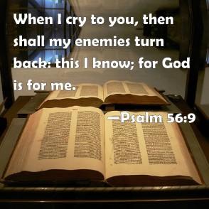 Psalm 56